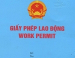 Work permit Service in Vietnam